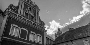 srebrnogorskie_muttowanie-38.jpg